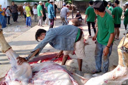 2.300 paket daging kurban dibagikan di Masjid Agung Karawang