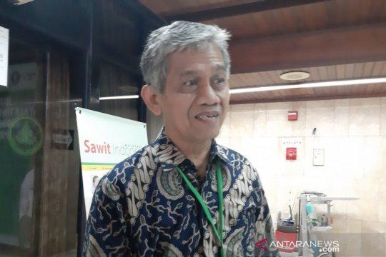 Gapki: Industri sawit khawatir COVID-19 terus tekan harga CPO