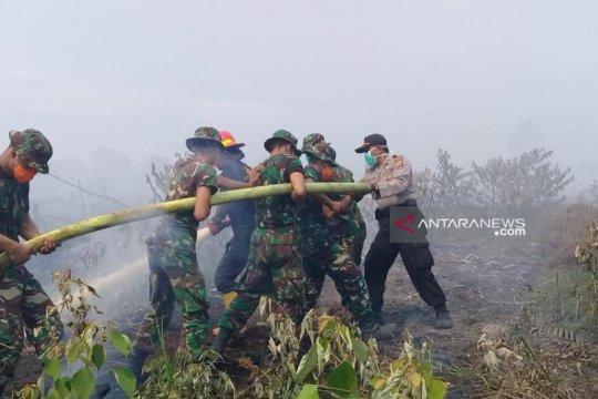 Kepala BNPB minta Polri lebih berani tindak pembakaran hutan