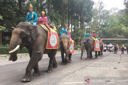Taman Safari Bogor gelar Parade Satwa di peringatan Hari Kemerdekaan