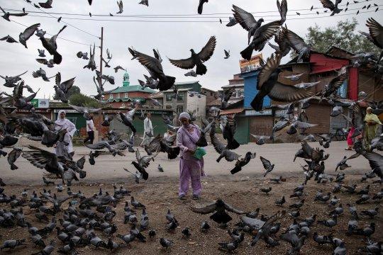 Kemlu RI dorong isu Kashmir diselesaikan lewat dialog Pakistan-India