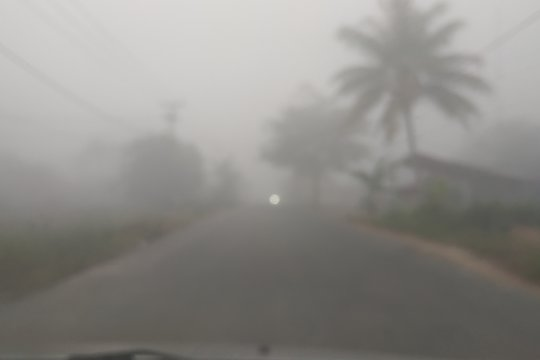 BPBD: 10 hektare lahan gambut terbakar di Pontianak