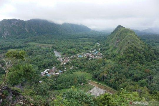 Kelompok sipil minta pemerintah selamatkan Pegunungan Meratus