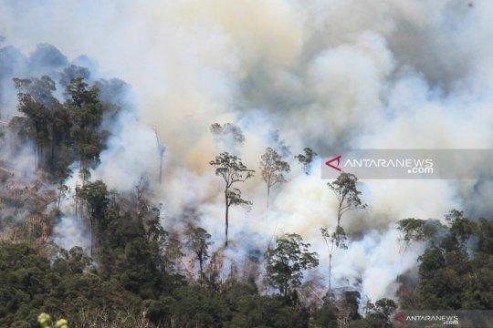 KLHK gencarkan sosialisasi pembukaan lahan tanpa bakar cegah karhutla