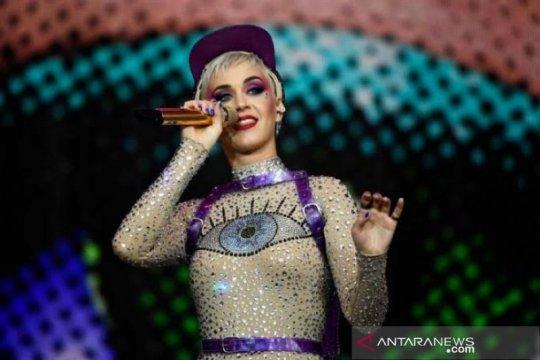 Katy Perry dituduh lecehkan model pria saat pesta
