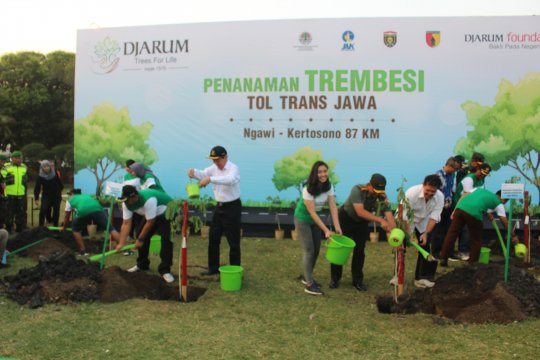 10 ribu pohon trembesi ditanam di tol Ngawi-Kertosono