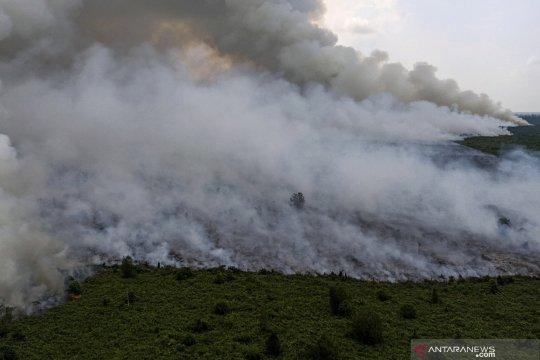 Akibat asap, Pemkab Musi Banyuasin minta maaf kepada warga Jambi