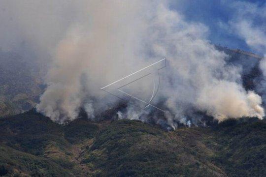 Kebakaran hutan gunung Sumbing Page 1 Small