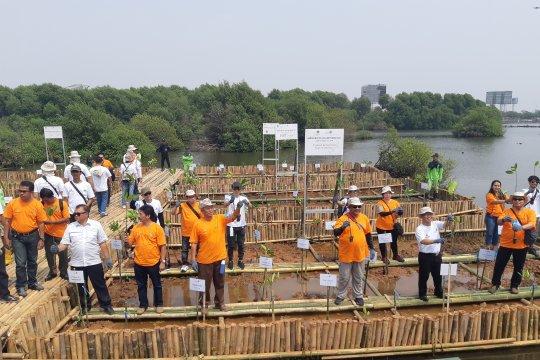 BKSDA DKI Jakarta dan YKAN gelar mangrove volunteers di Muara Angke