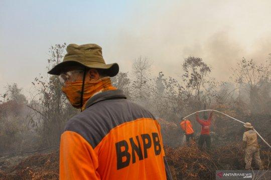 Pemadaman karhutla di Kabupaten Kampar terkendala sumber air