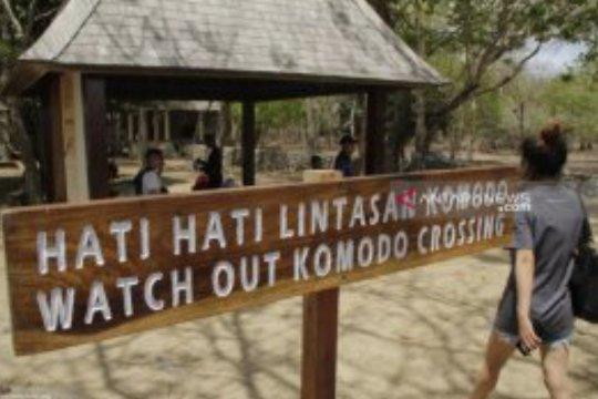 Operator tur tak menjual paket wisata Pulau Komodo untuk 2020