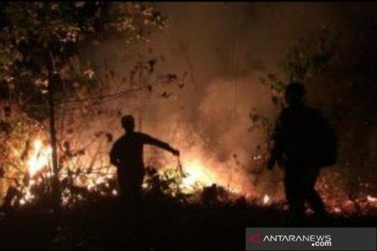 Polres Palangka Raya tunggu hasil pemeriksaan kejiwaan  pembakar lahan