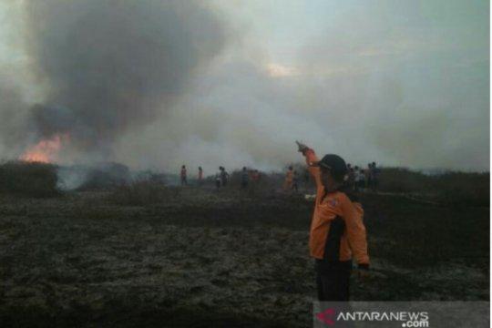 Selama dua pekan 25 hektare lahan terbakar