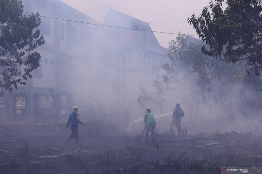 Lahan dekat kantor Pemerintah Kota Palangka Raya terbakar