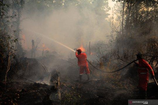 Waspadai kebakaran hutan dan lahan di Kalimantan