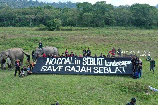 Aktivis bentangkan spanduk tolak tambang di habitat gajah Bengkulu