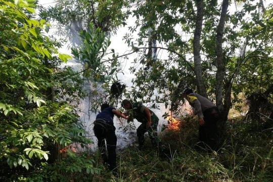 Kebakaran lahan terjadi di beberapa lokasi di Bangka Barat