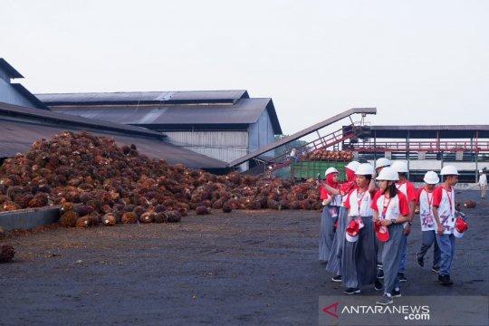 Peserta SMN Sulawesi Tengah kunjungi PTPN IV Kebun Adolina
