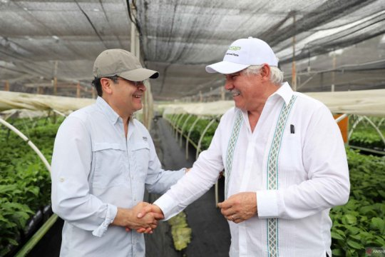 Presiden Honduras tertular virus corona