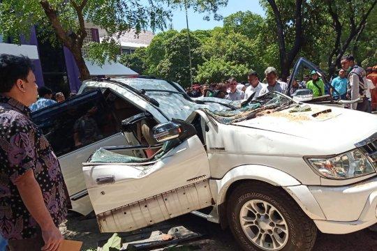 Satu tewas tertimpa pohon tumbang di parkiran Universitas Pancasila