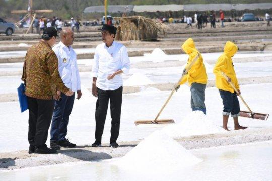 Jokowi ingin memastikan kekurangan garam mulai diatasi