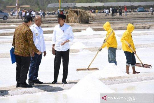 Presiden: Garam Nunkurus bisa menjadi garam Industri