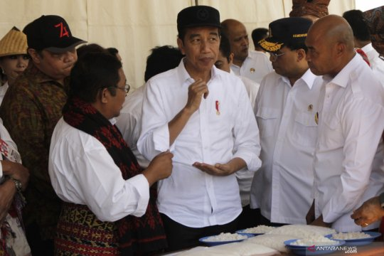 Presiden sebut keadaan di Papua sudah dalam kondisi yang baik