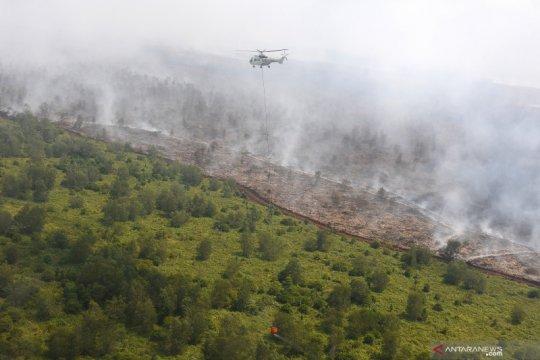 Pemadaman kebakaran hutan di Musi Banyuasin