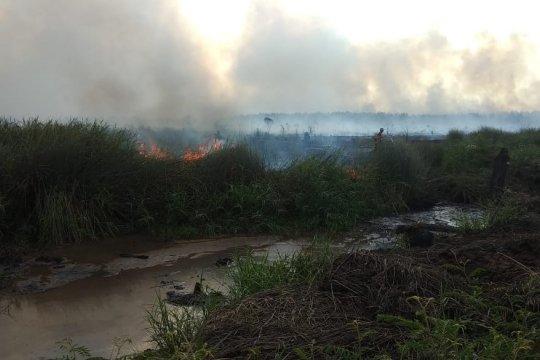 Satgas Kebakaran Hutan dan Lahan Musi Rawas tangkap pembakar lahan