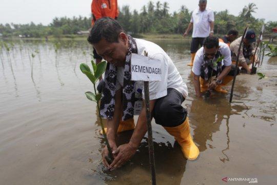 NGO Jerman tanam 4000 pohon mangrove