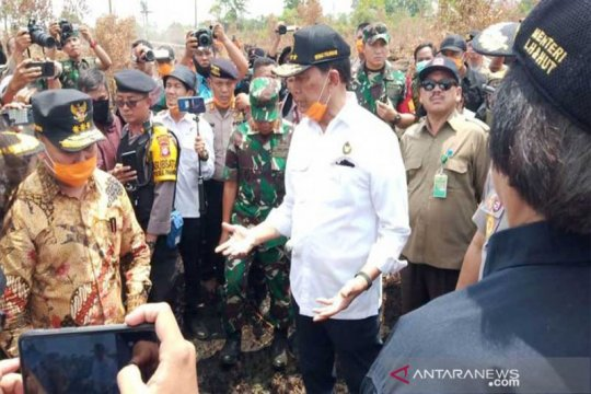 Upaya pemadaman karhutla di Kalimantan Tengah dinilai sudah optimal