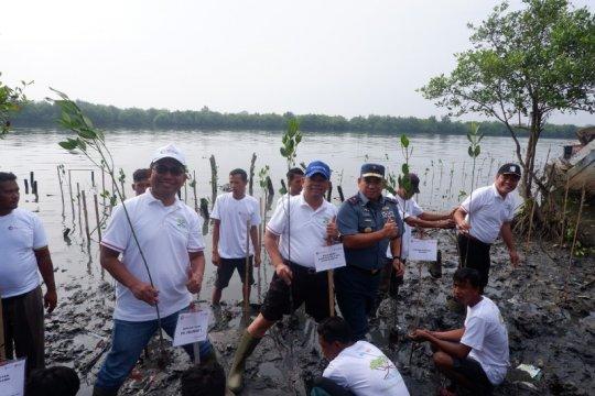 Kemenko Kemaritiman dan Pelindo I tanam mangrove