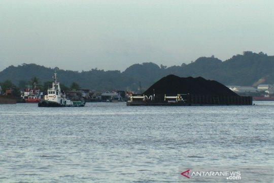 BUMI sumbang PNBP Rp9 triliun dari sektor minerba