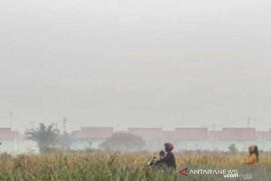 Satgas Karhutla Riau fokus pemadaman kebakaran gambut di Bengkalis