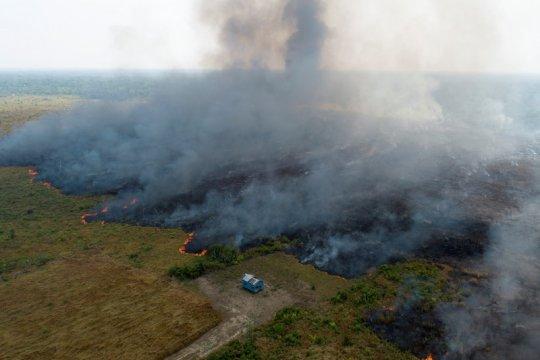 Brazil katakan negara-negara Amerika Selatan bertemu bahas Amazon