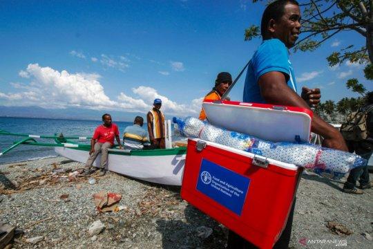 Komitmen FAO untuk pemulihan korban bencana