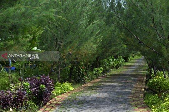 Surabaya terapkan program penanaman pohon berjarak 1,5-2 meter