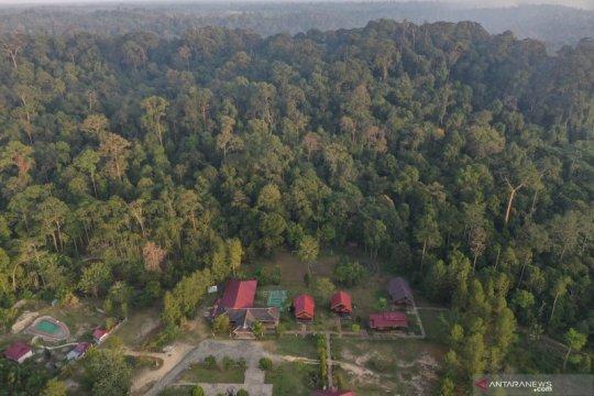 Bea Nehes, Desa Proklim Plus di jantung Kalimantan