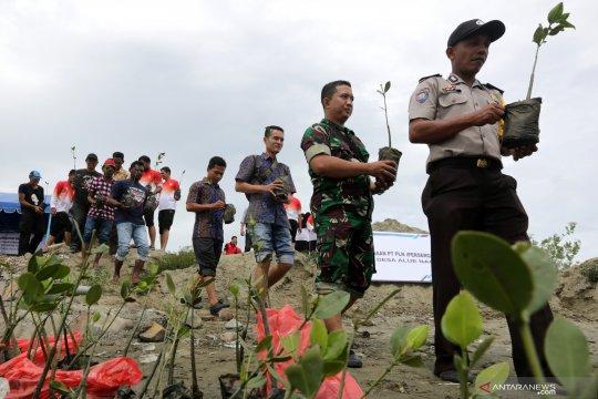 Konservasi tanaman mangrove