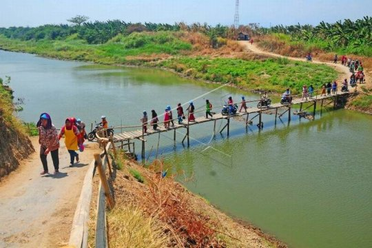 Jembatan kayu penghubung desa Page 1 Small