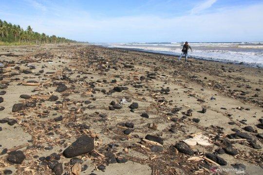 Limbah batu bara cemari pantai