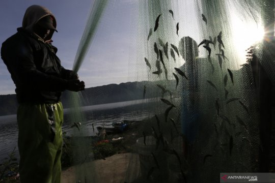 "KKP perkenalkan konsep ""speectra"" untuk selamatkan ikan endemik"
