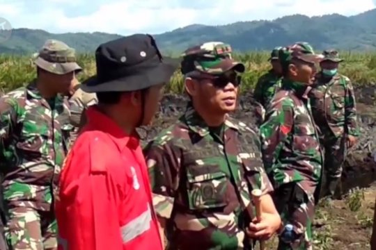 Ratusan hektare lahan gambut di Koltim terbakar, personel TNI disiagakan