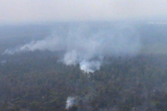 Satgas Karhutla Riau gencarkan patroli udara