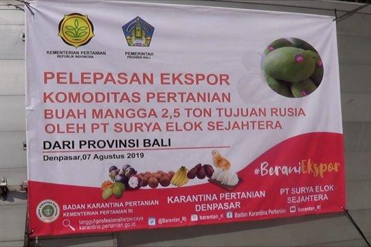 Mentan lepas ekspor perdana mangga dari Bali ke Rusia