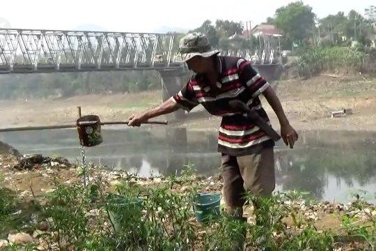 Warga manfaatkan sungai kering untuk bercocok tanam