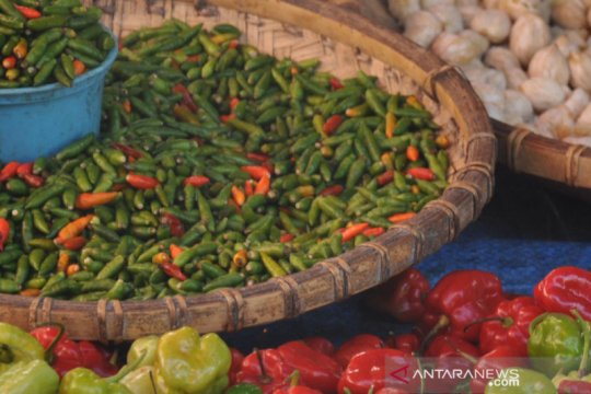 Kenaikan harga cabai rawit beri andil terhadap inflasi Kota Malang