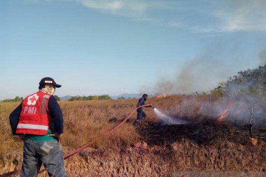 PMI Kabupaten Banjar terjunkan personel padamkan karhutla di Kalsel