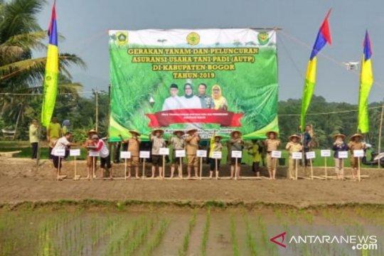 Jasinga, wilayah paling terdampak kemarau di Bogor