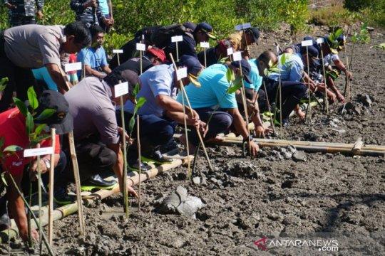 Pelindo III tanam 50.000 bibit bakau di Pelabuhan Benoa